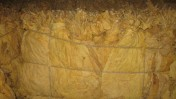 Liście TYTONIU różne gatunki producent 501155286