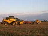 koszenie rzepaku zbóż kukurydzy