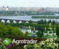 UkrainaNieruchomosci szczegolnie atrakcyjne cenowo - zdjęcie 1