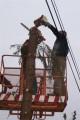 Trudne drzewa, wycinka drzew łódź -szybko SOLIDNIE