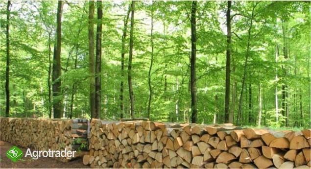 Ukraina.Trociny drzewne 4 zl/m3 + hala produkcyjna
