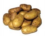 ziemniaki jadalne wineta workowane