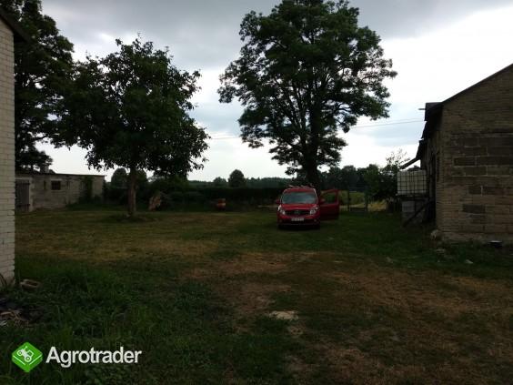 Siedlisko 13 ha z budynkami w gminie Kampinos - zdjęcie 5