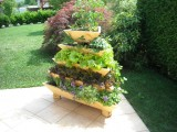 BiVITo Innowacyjna Bio Garden