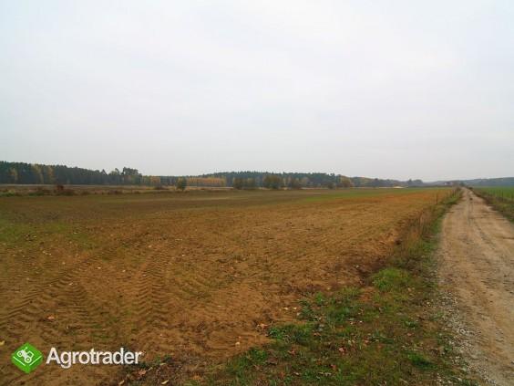 Grunty rolne, V i VI kl, koło Sycowa (dolnośląskie) - zdjęcie 1