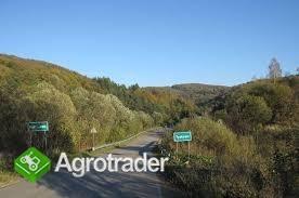 Bieszczady, Solina, 150 ha rolno-leśne - zdjęcie 6