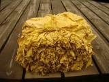 Sprzedam liście tytoniu, najlepsza jakość Virginia Gold, Barley