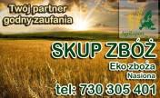 Skup zbóż paszowych oraz konsumpcyjnych