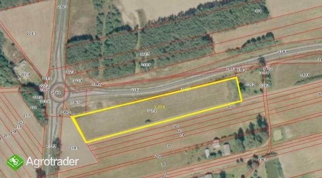 Działka inwestycyjna 1,27 ha z pozwoleniami gm Kościelec - zdjęcie 1
