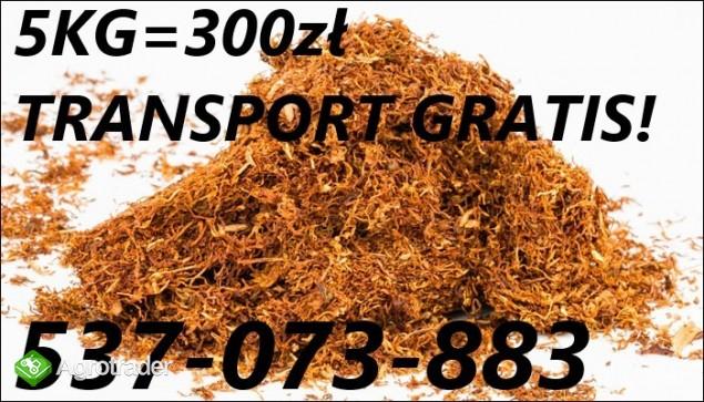 ^^^Sprzedam wysokiej klasy tytoń - 537O73883- tyton !!! 300zl za 5kg-