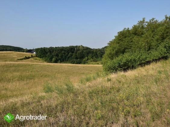 Na Sprzedaż Gospodarstwo Rolne , 507 799 m2 , Szczecin - Czepino  - zdjęcie 2