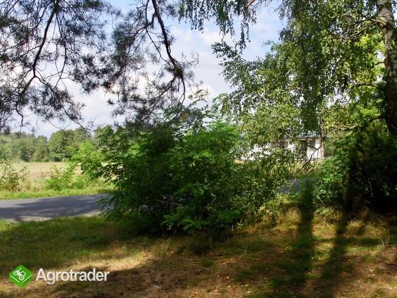 Sprzedam las blisko S17 - zdjęcie 3