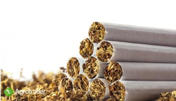tyton papierosowy kg  65zł KG-ODBIOR OSOBISTY,WYSYŁKA 534-438-380 - zdjęcie 2