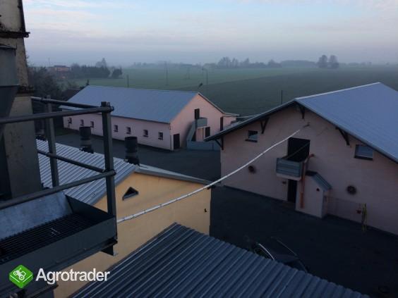 Sprzedam Gospodarstwo Rolne 126 ha - zdjęcie 6