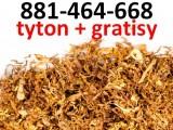 Tytoń Nevada, LD, Marlboro, PS, Chesterfield, tani tyton papierosowy