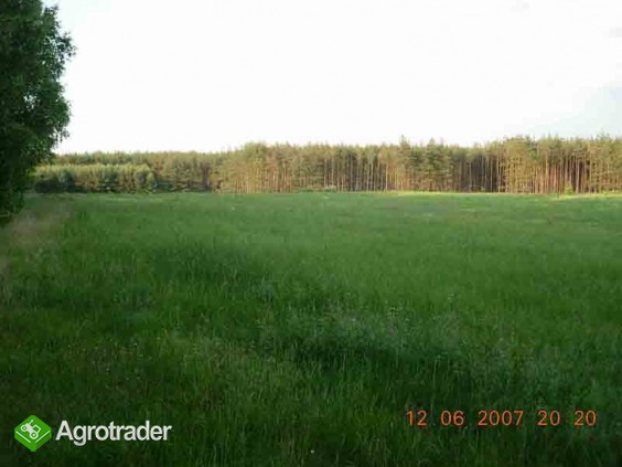 ziemia rolna na Kaszubach-działki po 3000m2 - zdjęcie 3