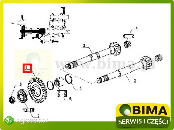 Używane koło zębate wom z34 Renault CLAAS 782,782-4,851 - zdjęcie 3
