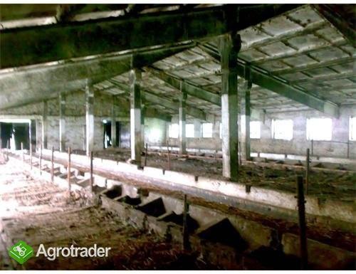 Ukraina.Duze gospodarstwo rolne.Na sprzedaz,wynajm - zdjęcie 2
