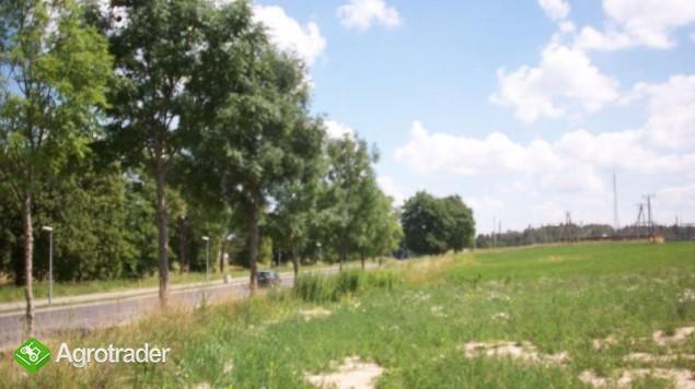 Działka na Mazurach- Gołdap - zdjęcie 1