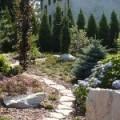 Projektowanie , zakładanie i pielęgnacja ogrodów