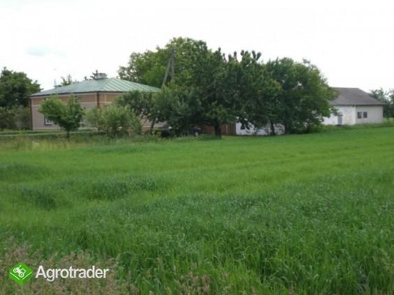 gospodarstwo rolne/siedlisko - zdjęcie 4