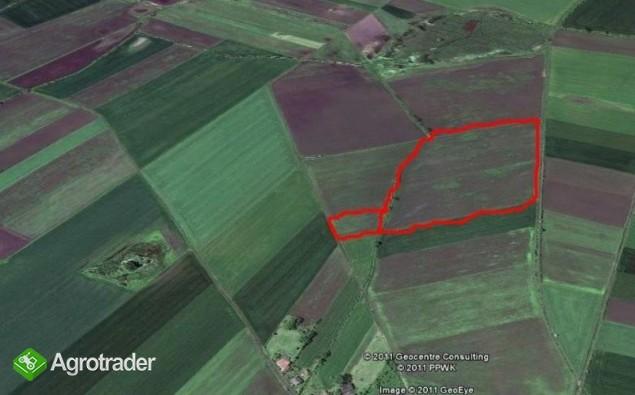 Ziemia rolna na sprzedaż - 5 ha - wieś Domaniów - zdjęcie 1