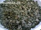 Biomasa Agro (PKS)