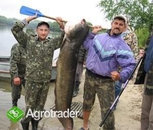 Ukraina.Nieruchomosci na dawnich polskich ziemiach - zdjęcie 4